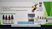 CTFO WORLD ANIMALS BUZZEZEVIDEO CTFO CBD PRODUCTS FOR PETS PIC