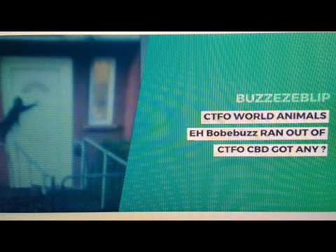 BUZZEZEBLIP CTFO WORLD ANIMALS EH Bobebuzz RAN OUT OF CTFO CBD GOT ANY ?