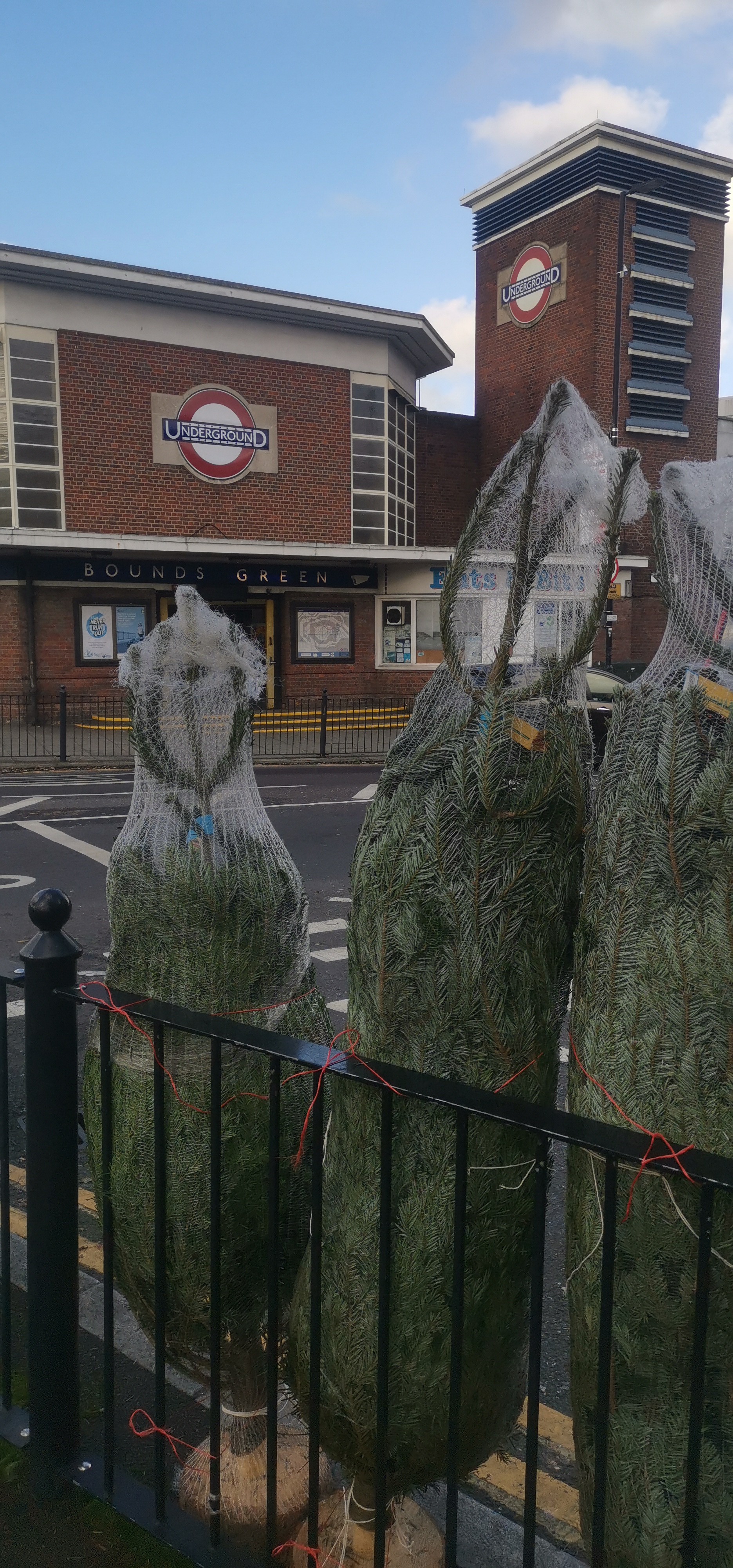 Xmas Trees at Bounds Green Tube