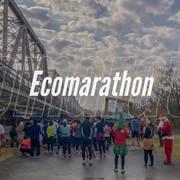 The 1st Adachi Ecomarathon (Full/10k)