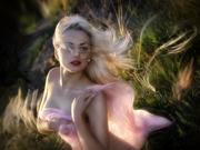 Beauty splendor