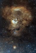Cederblad 214 / NGC7822 / Frågeteckennebulosan