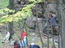 Tree climbing circuit:P