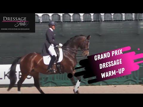 Grand Prix Dressage Warm-Up With Charlotte Jorst, Tinne Vilhelmson-Silfvén and Megan Lane!