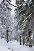 χειμώνας 32