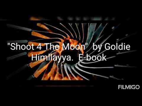 """I Got What you Need"" ft. Goldie Himllayya!"