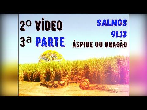 3ª PARTE - Salmos 91.13  COBRA OU DRAGÃO - Goianinha.