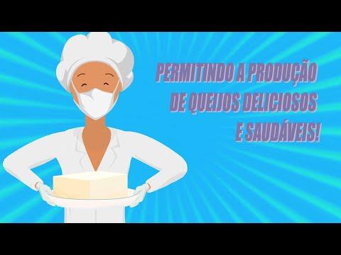 Pasteurização lenta do leite para queijos artesanais saudáveis com qualidade