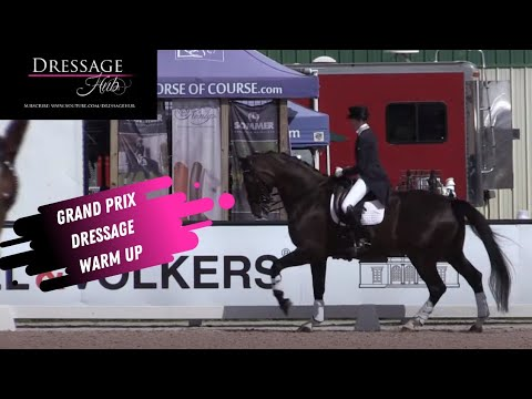 Grand Prix Dressage Warm-Up With Kelly Layne & Susan Pape