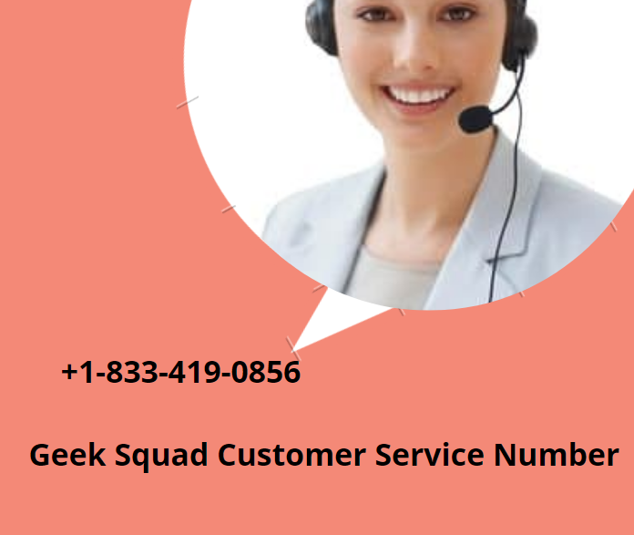 Geek Squad Service Number in the USA