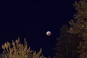 Månförmörkelse 20190121