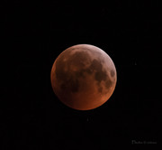 Blodmånen kl 05.56_CPC6191