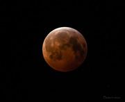 Blodmånen kl 06.41_CPC6344