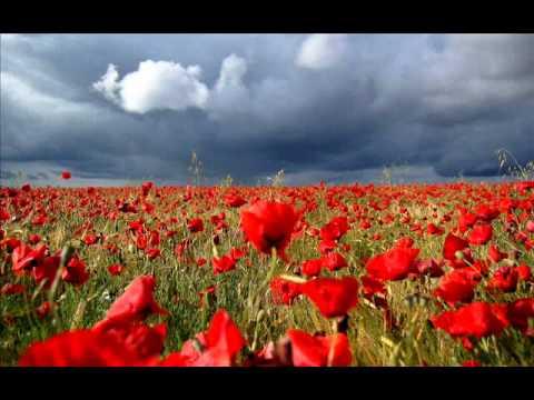 Grig Salvan - Doar pentru tine (Just for You)