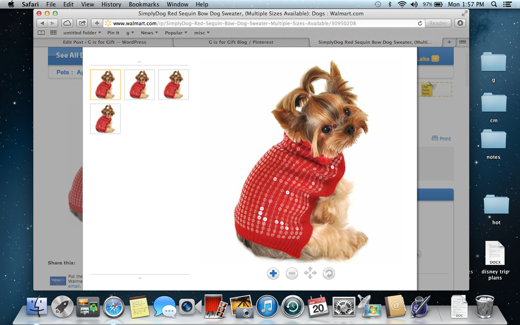 Web to Print Software for Pet Clothes: How to Make the Most