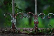 Στο βάθος ...κήπος