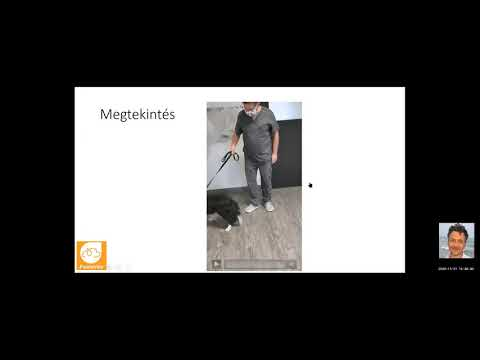 XIV. PMK 2020.11.21.  - A csípőízület és medence megbetegedései - Dr. Seregi Antal