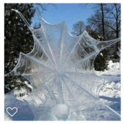 old bones icy spiderweb