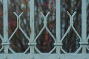 Στο βάθος ...κήπος (2)