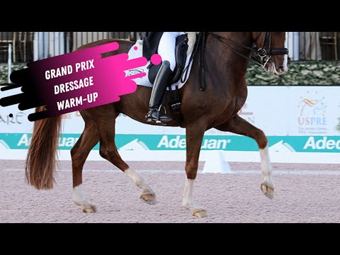 Watch Behind The Scenes In The Grand Prix Dressage Warm-Up