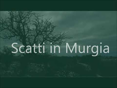 Scatti in Murgia al tramonto
