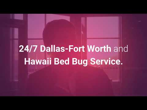 Fort Worth & Dallas Bed Bug Extermination | 4692000637 | bullseyek9.com