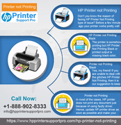 Get the effective treatment with our expert while printer not printing
