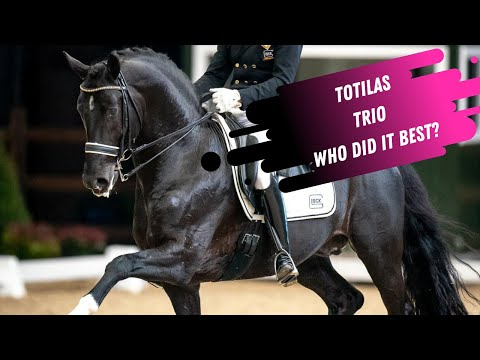 Which One Is Better? Totilas Offspring Comparison - Total US, Toto Jr & Go Legend