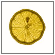 Lemon 2 mini