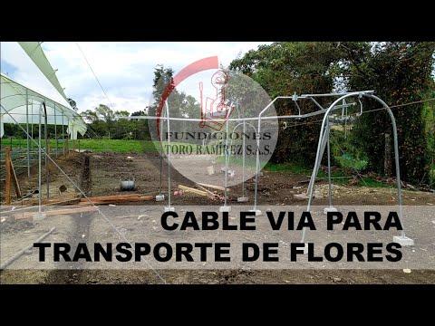 Cable vía para flores