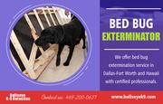 Bed Bug Exterminator   4692000637   bullseyek9.com
