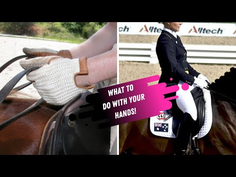 Stop Riding With Piano Hands! How To Improve Your Hands In Dressage