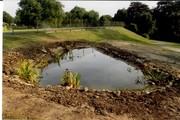 1993 August pond construction 21