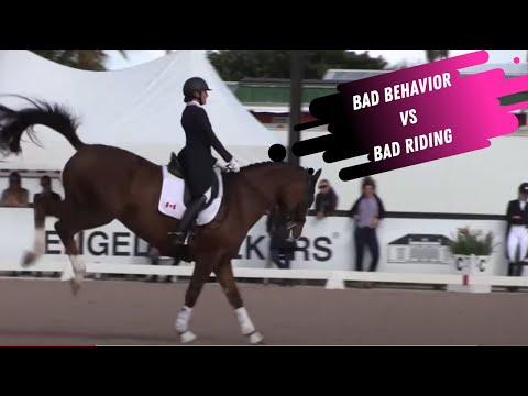 Breaking Down The Grand Prix Dressage Horse - Bad Behavior VS Bad Riding