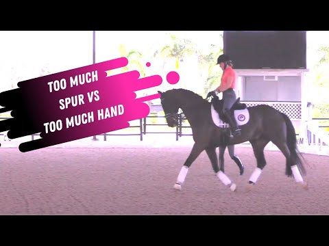 Too Much Spur VS Too Much Hand - An Exercise In Finding A Balance In Dressage