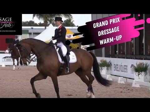 Grand Prix Dressage Warm-Up Megan Lane and Laura Tomlinson