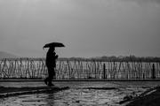 Περπατώντας-στη-βροχή