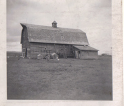 Photos from the old homestead