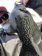 "Trying to Get A Selfie With a 15"" Class Black Crappie....4/10/2021"