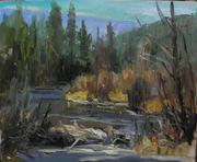 Beaver Country 16x20 o/c