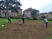 Preparing Meadow 10.4.21