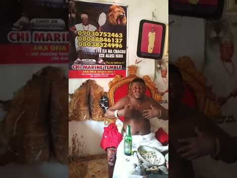 Native doctor begs Prophet Odumeje to forgive Ada Jesus who is now down with stroke