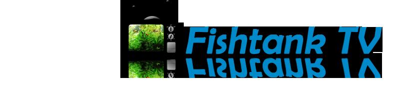 Fishtanktv
