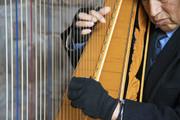 il suonatore d'arpa