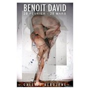 BENOIT DAVID exhibition