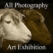 All Photography Art Exhibition Now Online and Ready to View