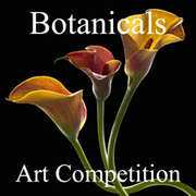 """Call for Entries – 4th Annual """"Animals"""" Online Art Competition"""