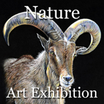 Nature 2014 Art Exhibition Now Online Ready to View