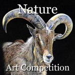 """Art Call - Theme """"Nature"""" Online Art Competition"""