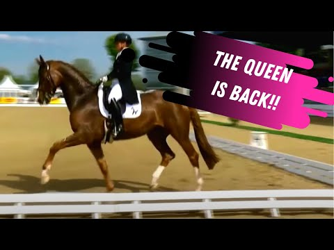 The QUEEN Is Back! Isabell Werth and Bella Rose Score 80% In The Grand Prix Dressage Test